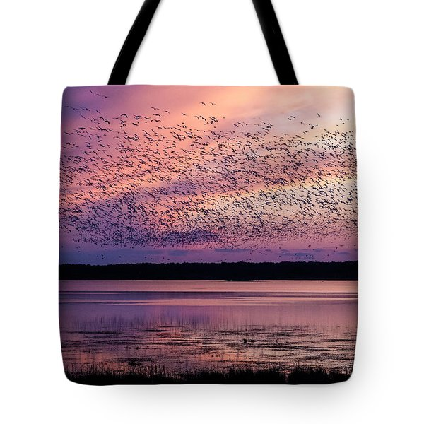 Morning Commute Tote Bag by Joan Davis