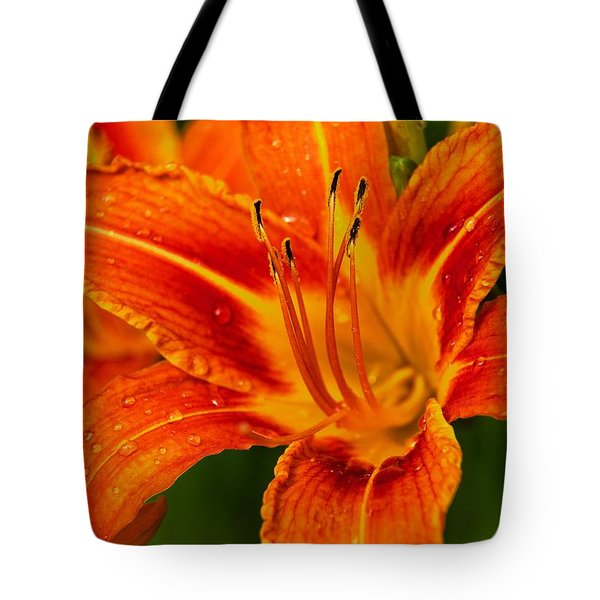 Morning Dew Tote Bag by Dave Files