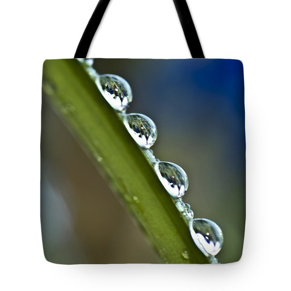 Morning Dew Drops 2 Tote Bag by Heiko Koehrer-Wagner