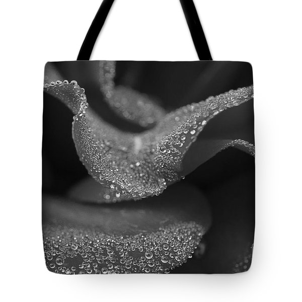Tote Bag featuring the photograph Morning Dew by Inge Riis McDonald