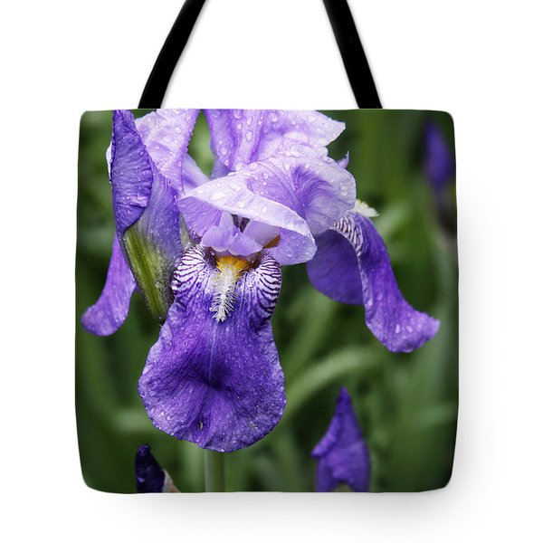 Morning Dew On The Iris Tote Bag