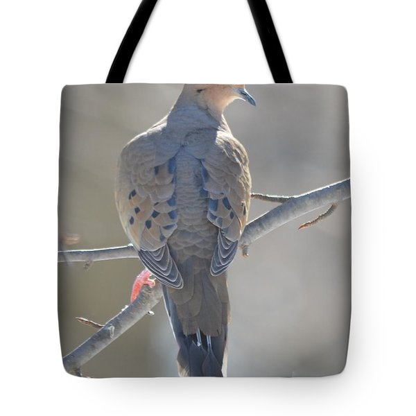 Mourning Dove Tote Bag by Richard Bryce and Family