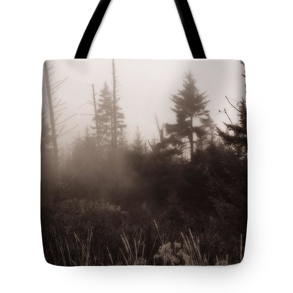 Morning Fog In The Smoky Mountains Tote Bag by Dan Sproul