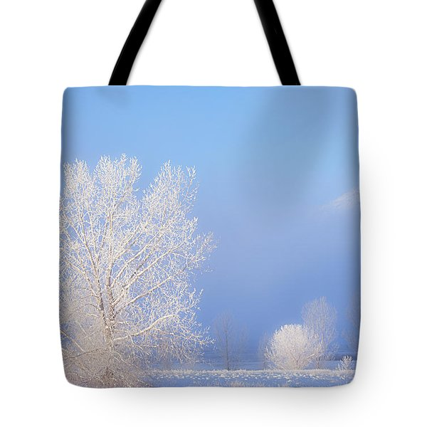 Morning Frost Tote Bag by Darren  White