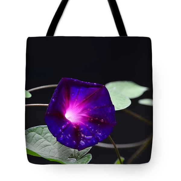 Morning Glory - Grandpa Ott's Tote Bag