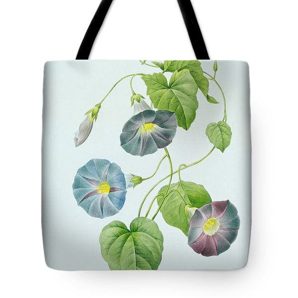 Morning Glory Tote Bag by Pierre Joseph Redoute