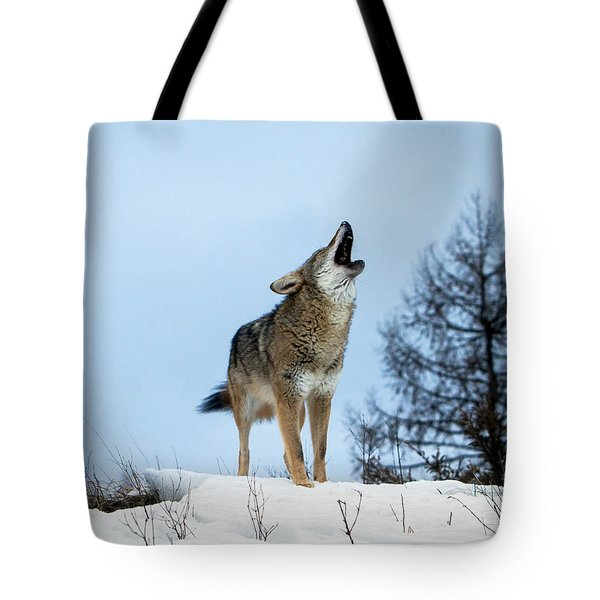 Tote Bag featuring the photograph Morning Howl by Jack Bell