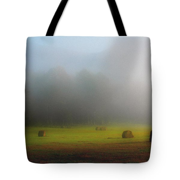 Morning In The Cove Tote Bag by Douglas Stucky
