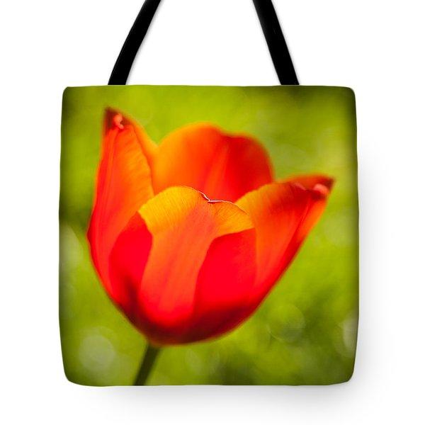 Morning Joy Tote Bag by Davorin Mance