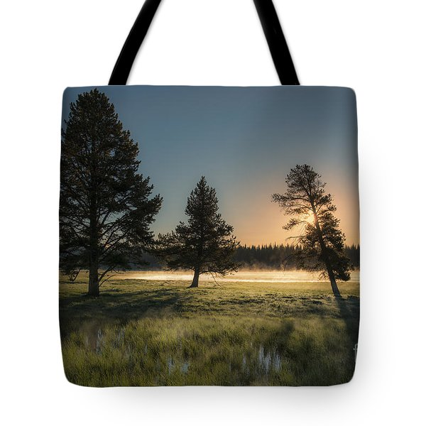 Morning Light In Yellowstone Tote Bag by Sandra Bronstein