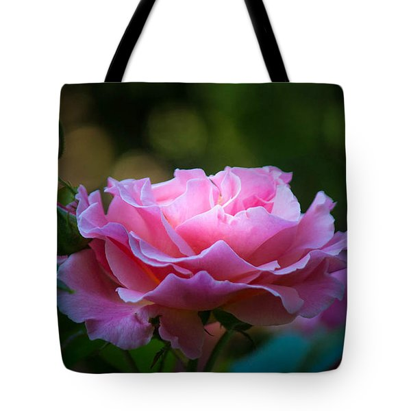 Tote Bag featuring the photograph Morning Light by Patricia Babbitt