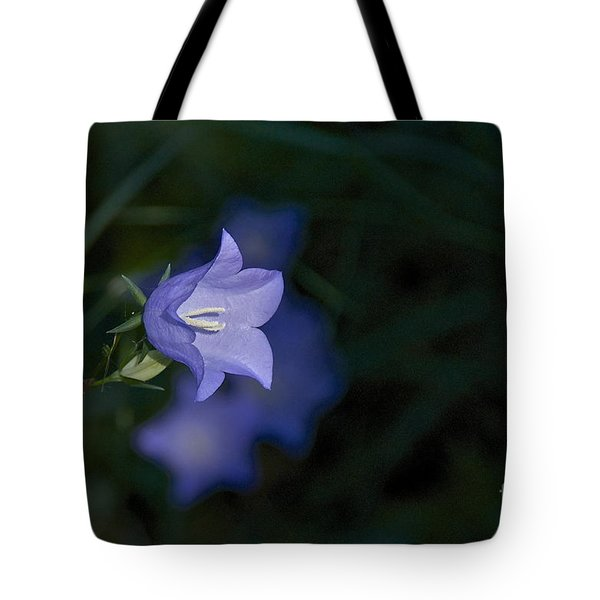 Morning Light Tote Bag by Sean Griffin