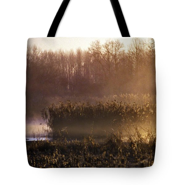 Morning Light Tote Bag by Skip Willits