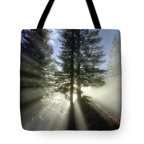 Morning Love Tote Bag by Daniel Furon