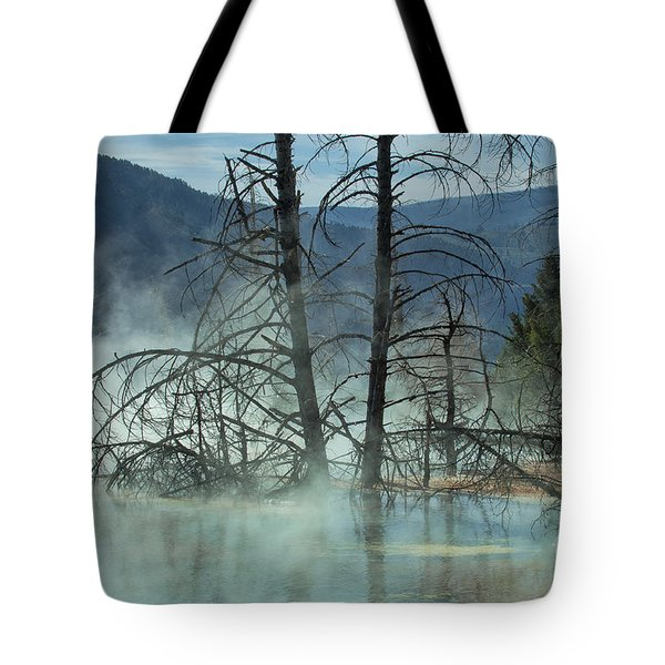 Morning Mist At Mammoth Hot Springs Tote Bag by Sandra Bronstein