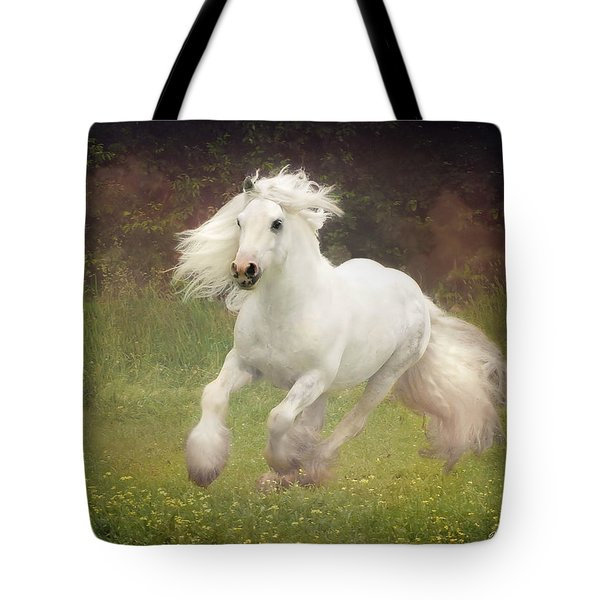 Morning Mist C Tote Bag by Fran J Scott