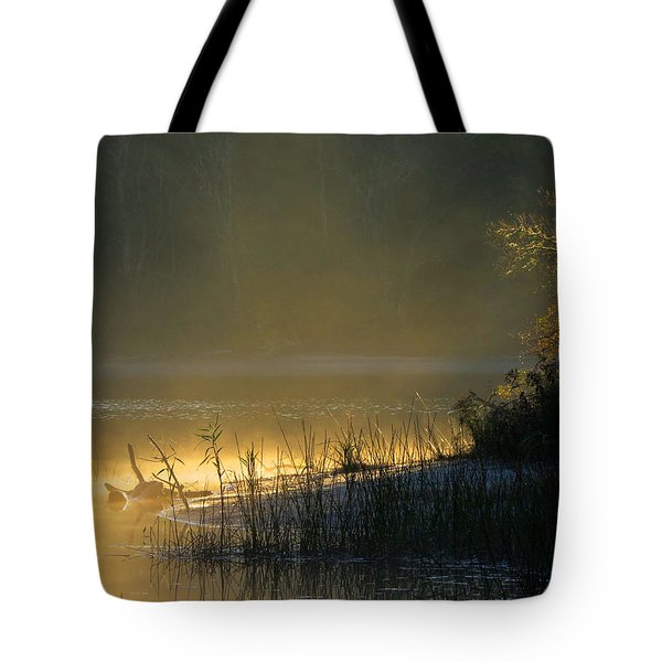 Tote Bag featuring the photograph Morning Mist by Dianne Cowen