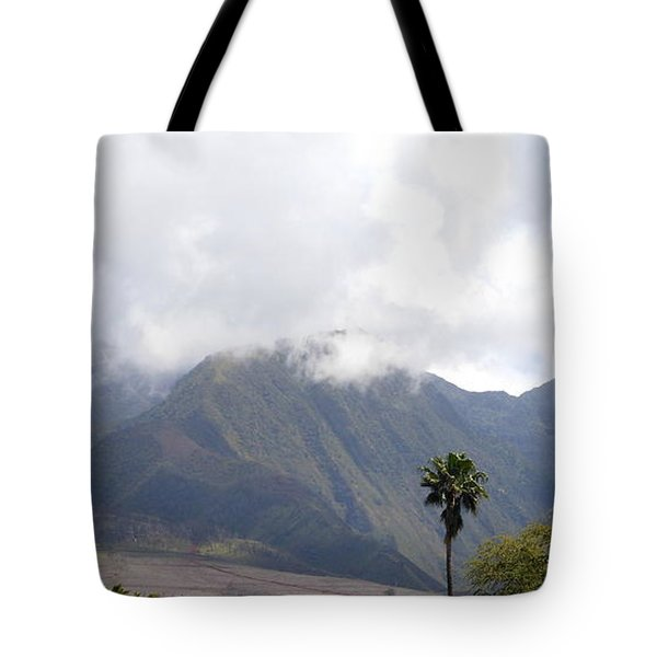 Tote Bag featuring the photograph Morning Mist by Fred Wilson