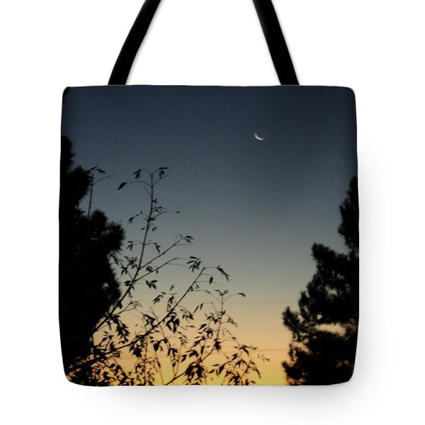 Tote Bag featuring the photograph Morning Moonshine by Carla Carson