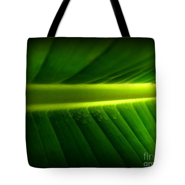 Morning Rain Droplets Tote Bag