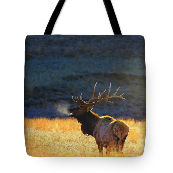 Tote Bag featuring the photograph Morning Breath by Kadek Susanto