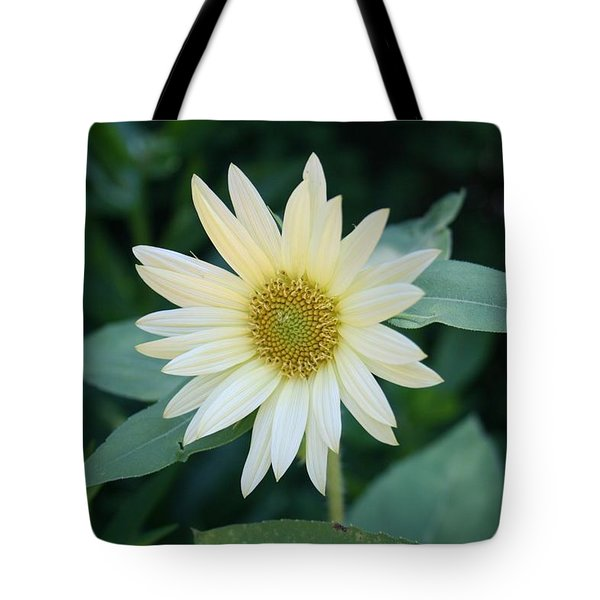 Morning Smile Tote Bag by Kathleen Scanlan
