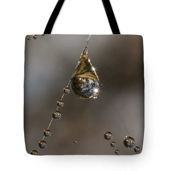 Tote Bag featuring the photograph Morning Spider Web Dew by David Lester