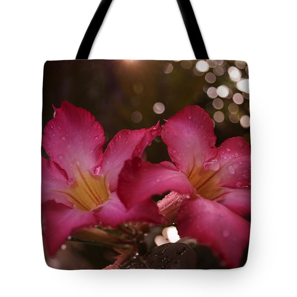 Tote Bag featuring the photograph Morning Sunshine And Rain by Miguel Winterpacht