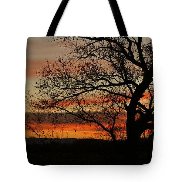 Morning View In Bosque Tote Bag