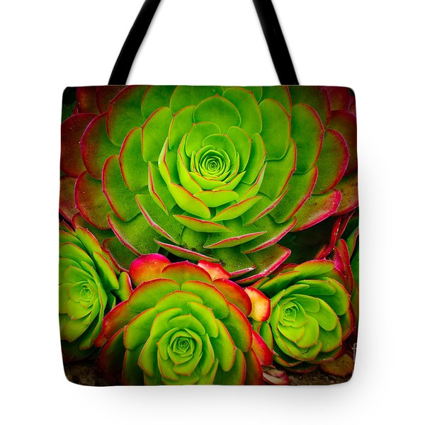 Morro Bay Echeveria Tote Bag