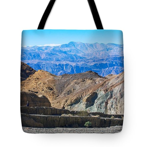 Tote Bag featuring the photograph Mosaic Canyon Picnic by Stuart Litoff