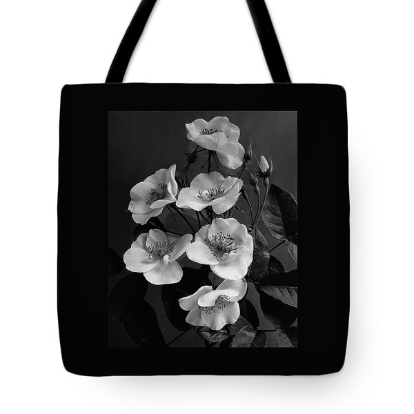 Moschata Alba Tote Bag