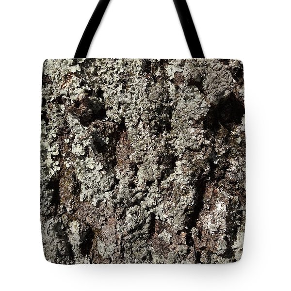 Tote Bag featuring the photograph Moss And Lichens by Jason Williamson