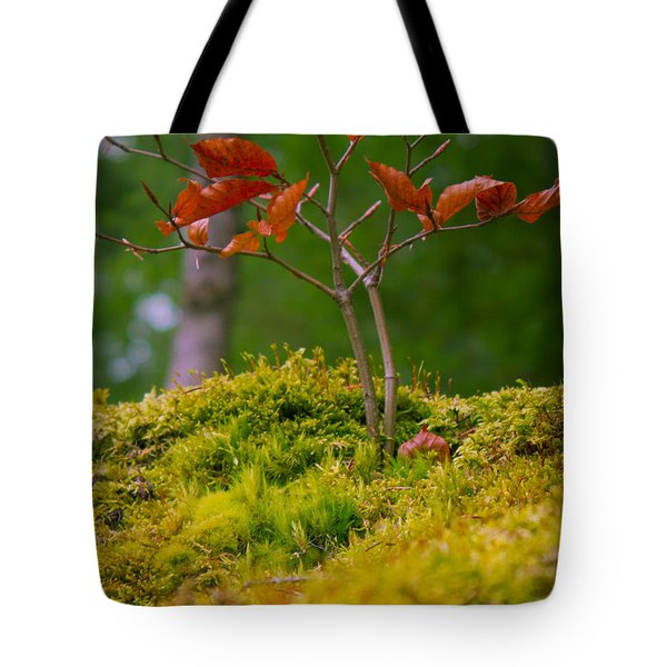 Moss Close-up With A Small Branch With Red Leafs Tote Bag