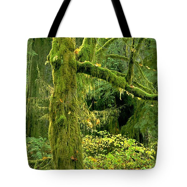 Tote Bag featuring the photograph Moss Draped Big Leaf Maple California by Dave Welling