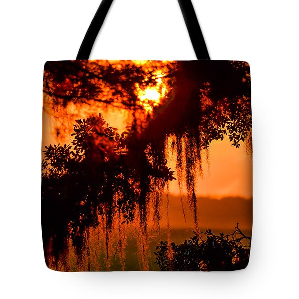 Moss Meets Sun  Tote Bag by Mary Ward