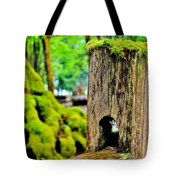 Mosspost Tote Bag by Benjamin Yeager