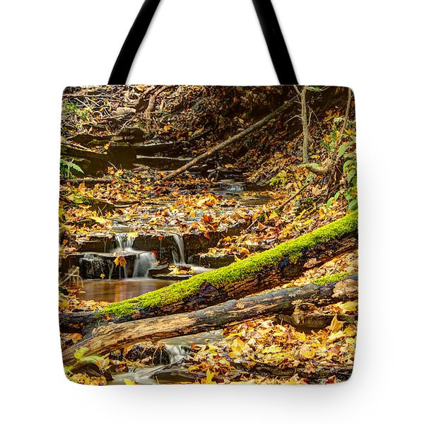 Mossy Log And Stream Tote Bag