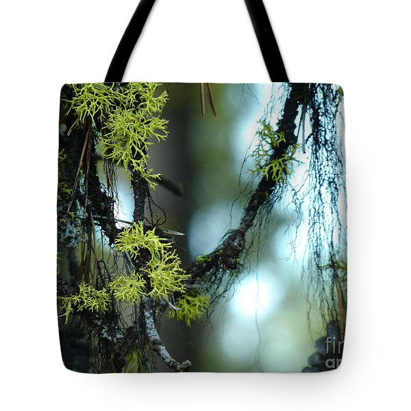 Mossy Playground Tote Bag