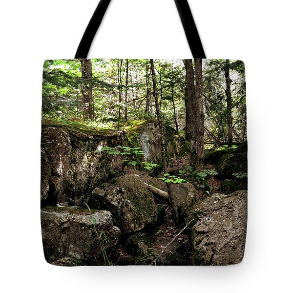 Mossy Rocks In The Forest Tote Bag