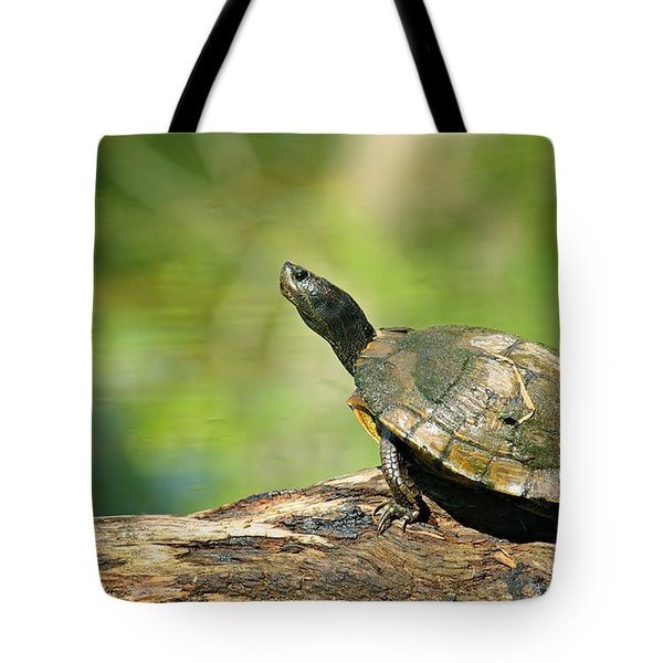Mossy Turtle Tote Bag