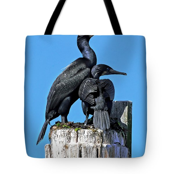 Tote Bag featuring the photograph Mother And Baby Brandt's Cormorants by Susan Wiedmann