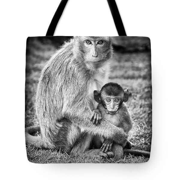 Mother And Baby Monkey Black And White Tote Bag by Adam Romanowicz