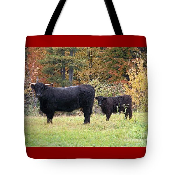 Tote Bag featuring the photograph Highland Cattle  by Eunice Miller