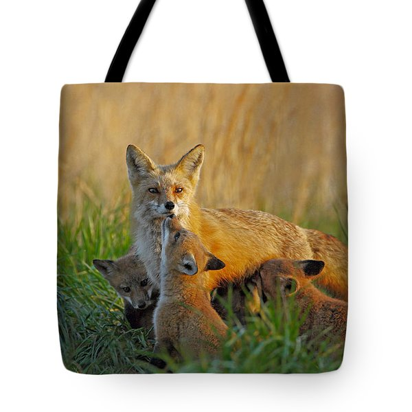 Mother Fox And Kits Tote Bag
