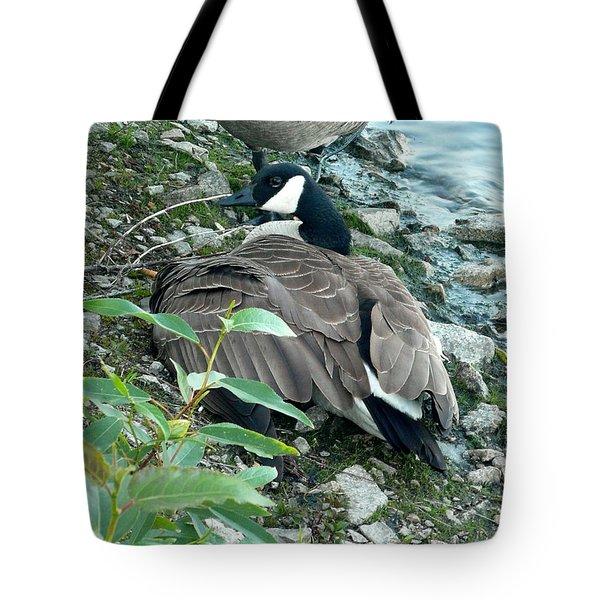 Mother Goose Tote Bag by Nicki Bennett