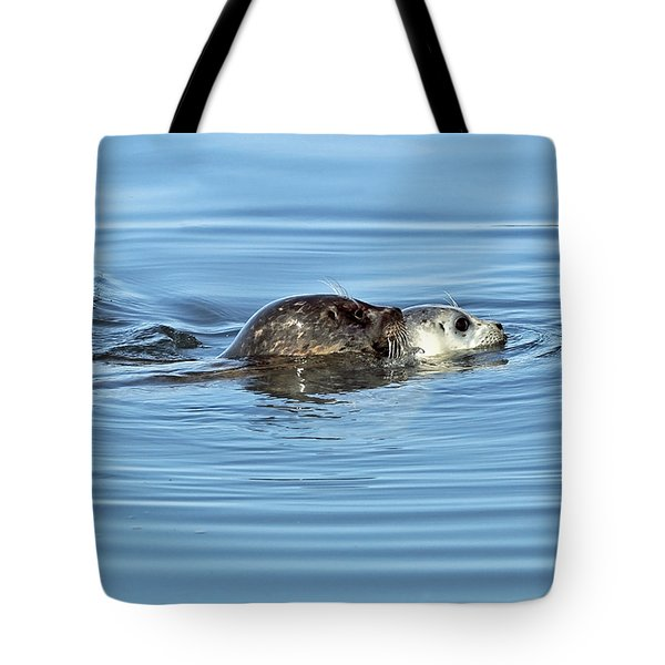 Tote Bag featuring the photograph Mother Harbor Seal And Pup by Susan Wiedmann