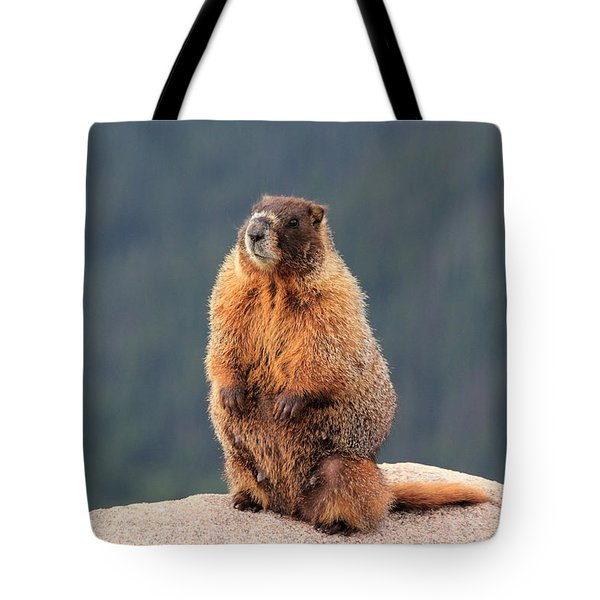 Mother Marmot Tote Bag