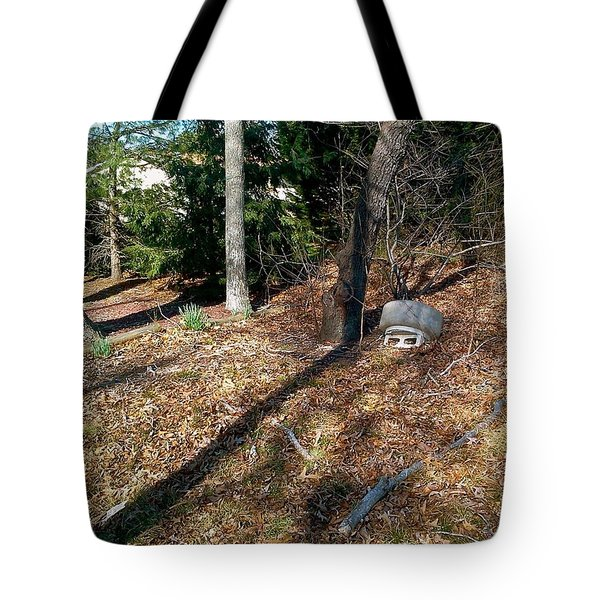 Tote Bag featuring the photograph Mother Nature by Amazing Photographs AKA Christian Wilson