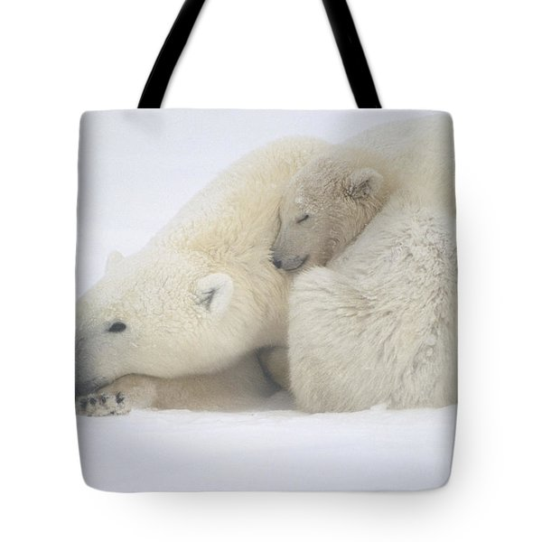 Mother Polar Bear & Cub Huddle In Snow Tote Bag